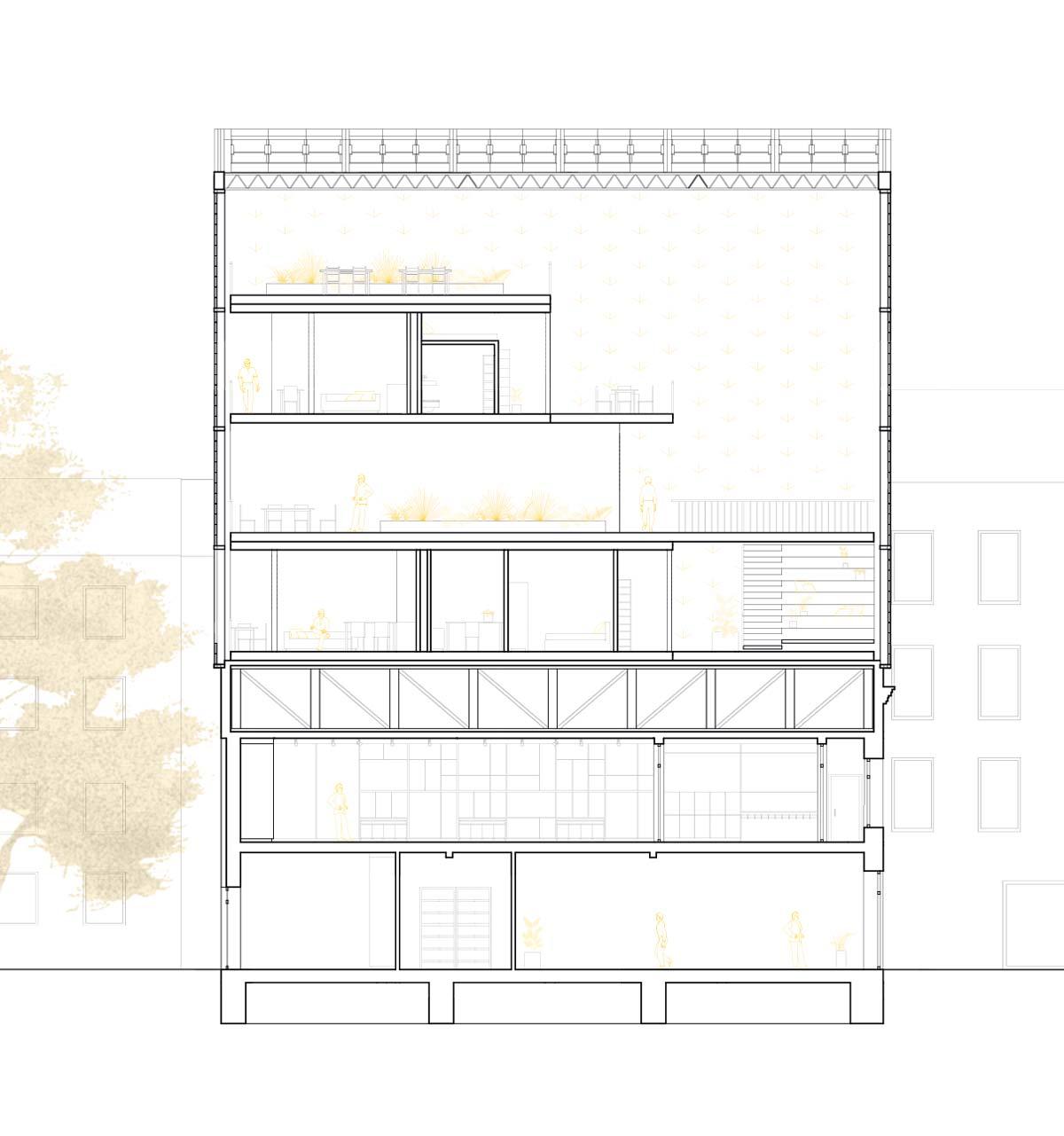 Querschnitt des MIMOs-Gebäudes mit Cafe Ada in Wuppertal, Mirke. Solar Decathlon Europa 21/22